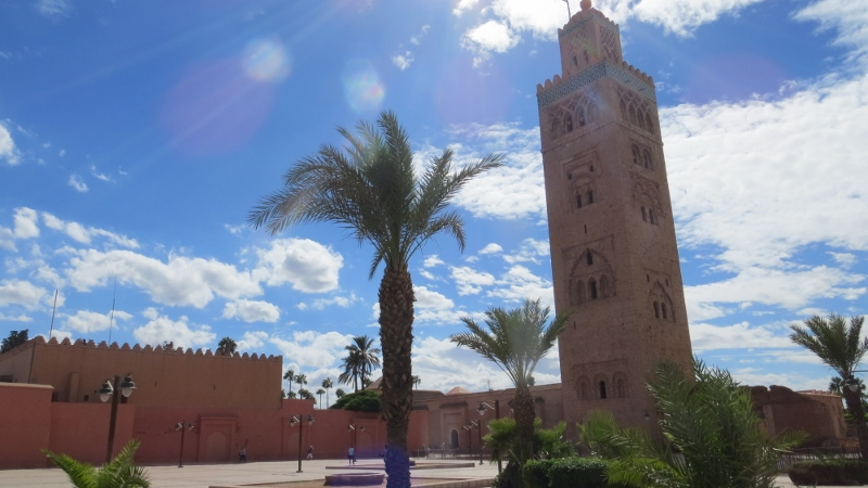 Marrakesh in a Day : Mosque, Snails, and Sheep Head
